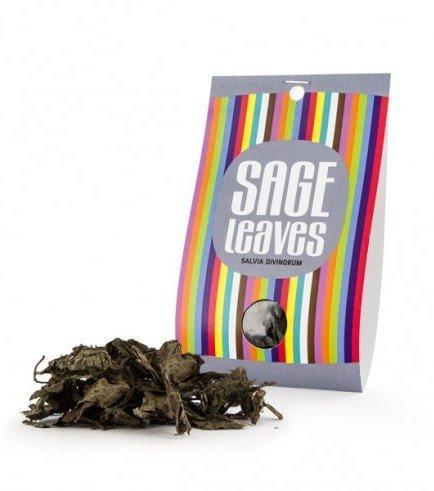 Salvia divinorum blätter, 10 grams