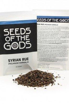 Syrische Steppenraute (Peganum Harmala), 10 gramm