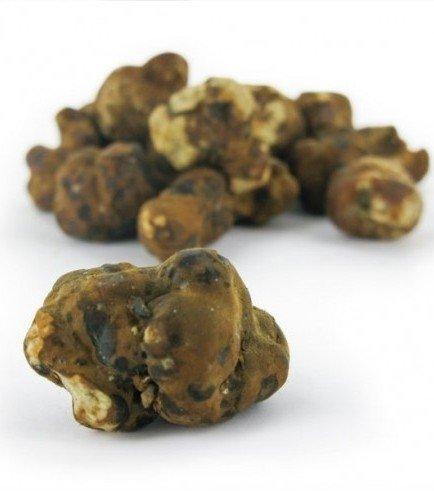 Halluzinogene trüffel Mexicana, 15 gramm