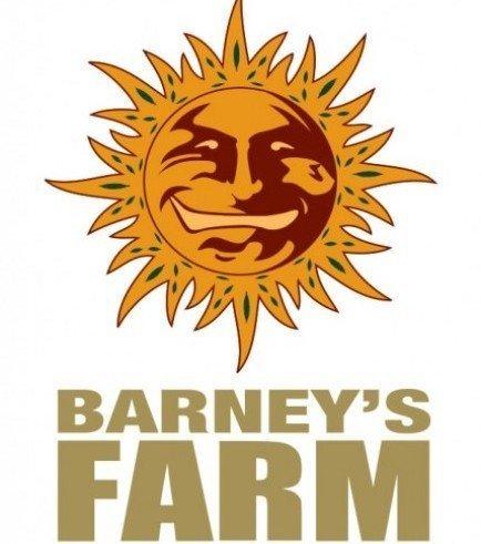 Peyote Lemon (Barney's Farm)