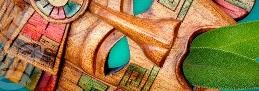 Salvia Wird In Indigenen Zeremonien Verwendet