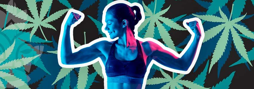 Training Und Cannabis