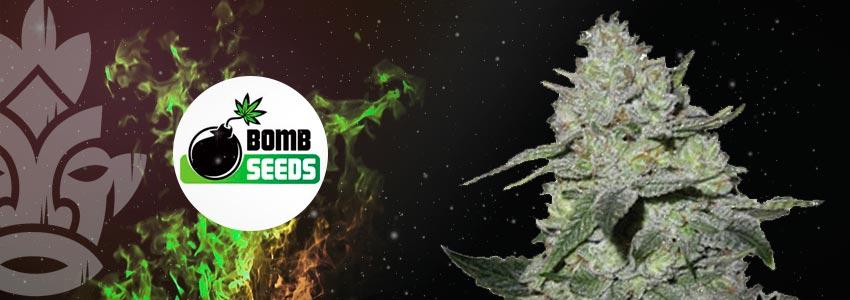 GORILLA BOMB—25% THC