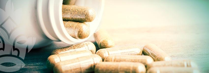 Was Ist Eine Gute Menge Für Die Mikrodosierung Von Zauberpilzen Und -trüffeln?