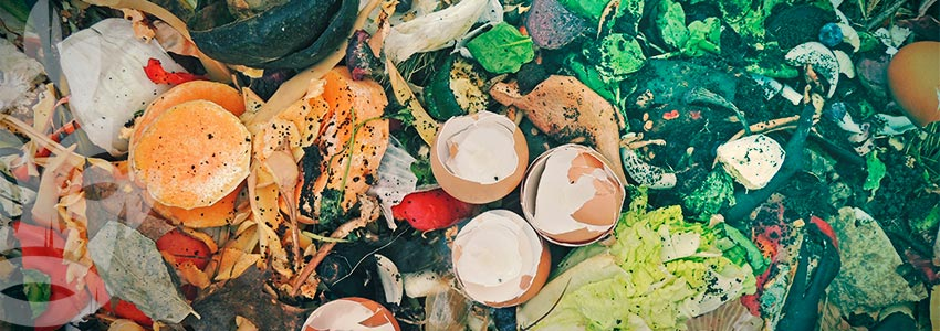 Wie Man Einen Komposthaufen Anlegt