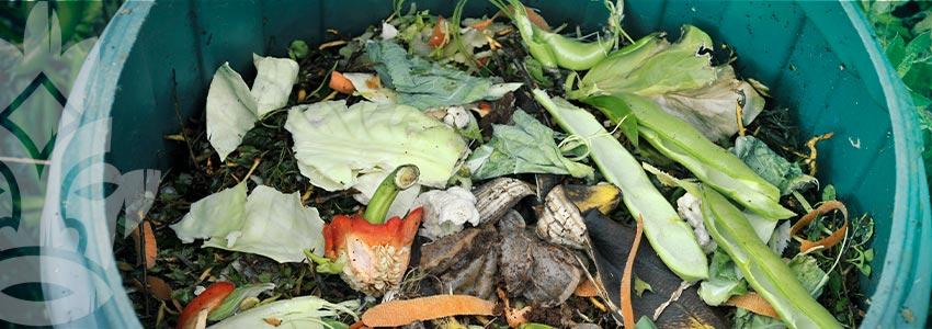 Wie Man Komposttee Und Enzymreiche Güsse Ansetzt