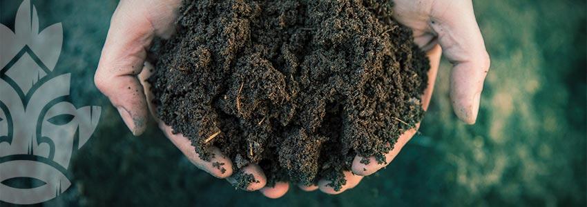 Bodenporosität: Wissen Ist Macht