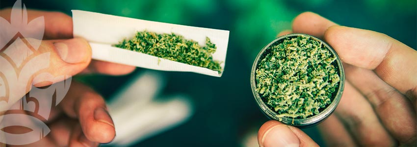 Vorteile Eines Cannabis-grinders