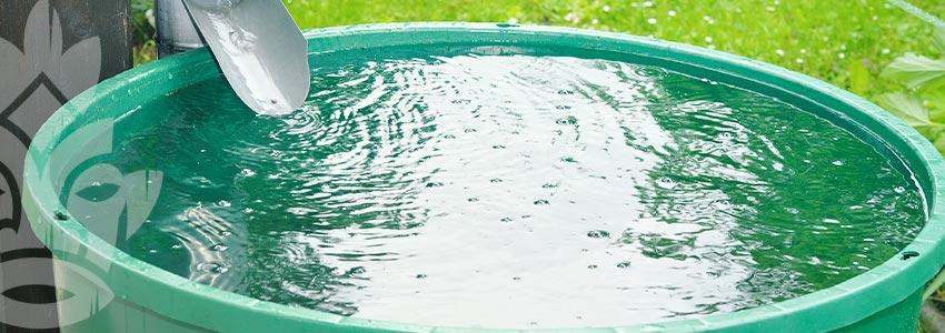 Verwende Regenwasser