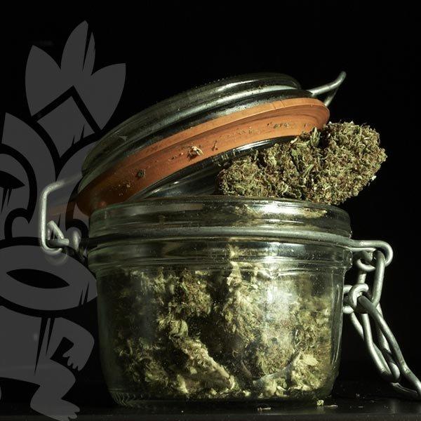 Cannabis Aushärten