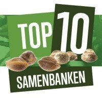 Top 10 Cannabis Samenbanken