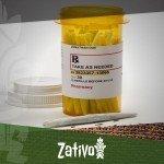 Ein Blick Auf Cannabis Als Schmerzmittel