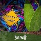 Salvia Divinorum - 10 Tipps Für Einen Sicheren Trip