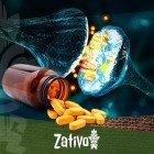 Trip E Happy Caps Zativo