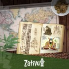 Die Herkunft und Geschichte von Cannabis
