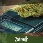 Wie Man Cannabis Mikrodosiert