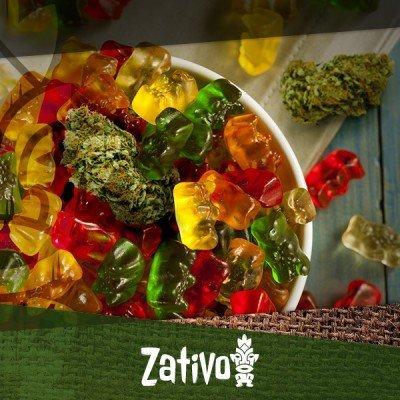 Kochen mit Cannabis: Hanfbärchen