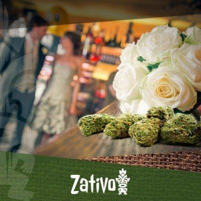 Der Neueste Trend: Marihuana Satt Auf Deiner Hochzeit!