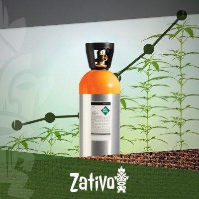 Füge Deinem Growroom CO2 Hinzu Und Erhöhe Den Ertrag