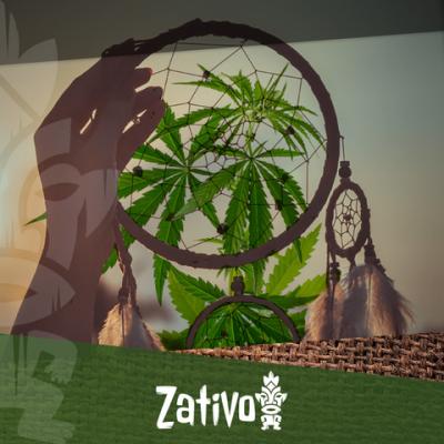Wie Beeinflusst Cannabis Deinen Schlaf?