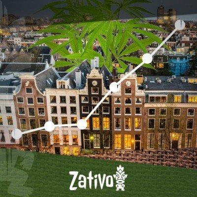 Der Aufstieg Der Coffee Shops In Amsterdam