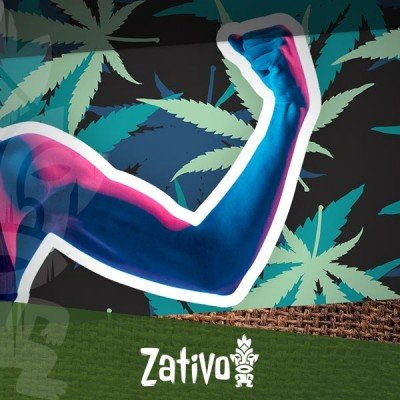 Die Wirkung Von Marihuana Auf Physisches Training