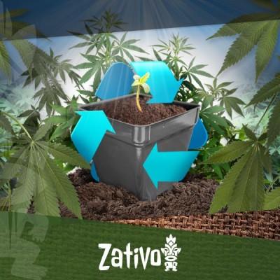 Wie Du Die Erde Deines Cannabisanbaus Wiederverwendest