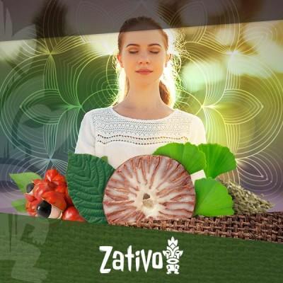 7 natürliche Energiespender, die Deinen Körper und Geist beleben