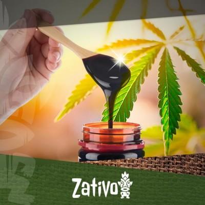 Verbessere die Gesundheit Deiner Cannabispflanzen mit Melasse