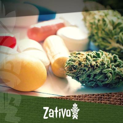 Ist Cannabis die Antwort auf Antibiotika-Resistenz?