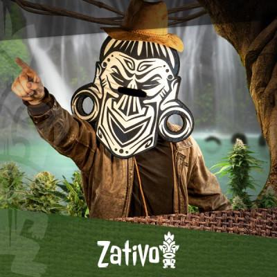 Finde mit dem Cannabis-Seedfinder Deine bevorzugte Cannabissorte